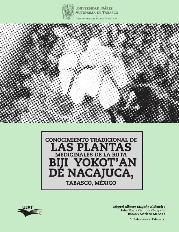 Cubierta para Conocimiento tradicional de las plantas medicinales de la ruta Biji Yokot'an de Nacajuca, Tabasco, México