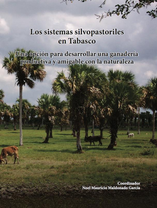 Cubierta para Los sistemas silvopastoriles en Tabasco: Una opción para desarrollar una ganadería productiva y amigable con la naturaleza