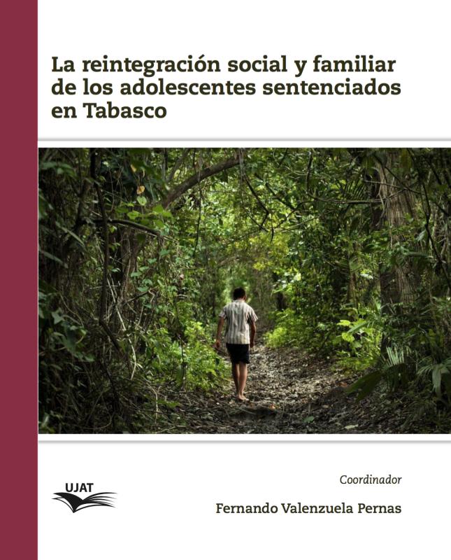 Cubierta para La reintegración social y familiar de los adolescentes sentenciados en Tabasco